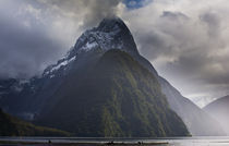 Neuseeland, Southland, Fjordland Nationalpark. von Jason Friend