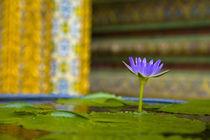 Thailand, Bangkok, The Grand Palace. by Jason Friend