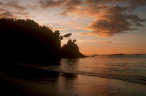 New Zealand, Stewart Island, Bungaree Beach by Jason Friend