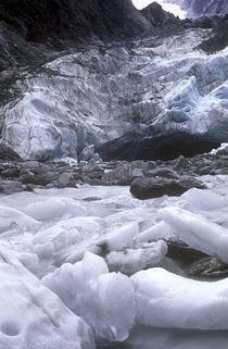 New Zealand, West Coast, Westland National Park by Jason Friend