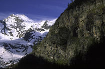 Italien, Valle d'Aosta, Nationalpark Gran Paradiso von Jason Friend