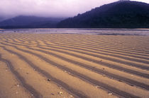 Neuseeland, Marlborough, Able Tasman National Park von Jason Friend