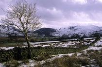 England, Cumbria, Lake District National Park. von Jason Friend