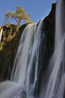 Morocco, Central Morocco, Cascades D'Ouzoud by Jason Friend