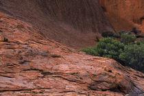 Australien, Northern Territory, Uluru National Park von Jason Friend