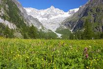 Switzerland Valais Val Ferret by Jason Friend