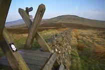 Schottland, Scottish Borders, The Pennine Way von Jason Friend