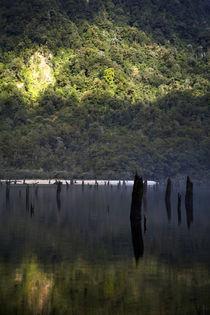 Neuseeland, Southland, Fjordland Nationalpark von Jason Friend