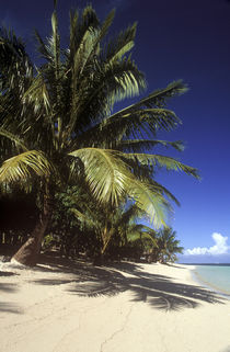 Independent Samoa, Savai'I, Manase Beach by Jason Friend