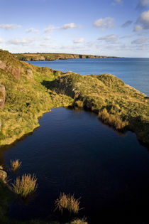 Clifftop Pool and view along the Copper Coast, Bunmahon, Co Waterford, Ireland von Panoramic Images