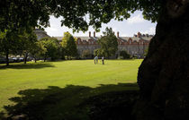 Croquette Game in New Square, Trinity College, Dublin, Ireland by Panoramic Images