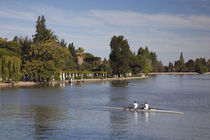 Tourist rowing a boat in a lake, General San Martin Park, Mendoza, Argentina von Panoramic Images