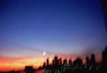 Silhouette of buildings at sunset, Dallas, Texas, USA by Panoramic Images