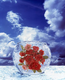 Crystal round vase filled with ice and red roses resting on seashore  von Panoramic Images