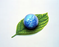 Cloud filled globe resting on green leaf by Panoramic Images