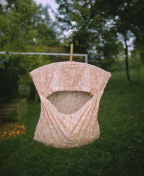 Clothespin container hanging from a clothesline, Baden-Wurttemberg, Germany by Panoramic Images