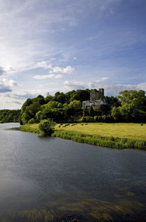 The Blackwater River and Castle, Ballyhooly, County Cork, Ireland by Panoramic Images