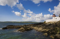 Ballynacourty Lighthouse, County Waterford, Ireland by Panoramic Images