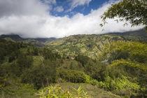 Mountain range on a landscape, Grand-Ilet, Cirque de Salazie, Reunion Island von Panoramic Images