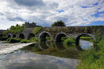 The 13 Arch Bridge over the River Funshion, Glanworth, County Cork, Ireland by Panoramic Images