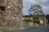 The French Tower and City Walls, Waterford City, Ireland von Panoramic Images