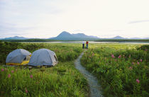 Two people camping along path by Panoramic Images