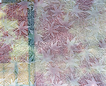 White leaves embossed on pink, yellow and blue fabric von Panoramic Images