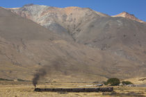 La Trochita narrow gauge steam train by Panoramic Images