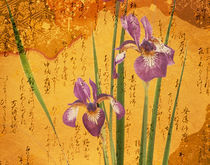 Oriental batik style purple bearded iris  von Panoramic Images