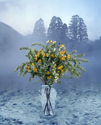 Bouquet of flowers in clear vase  von Panoramic Images