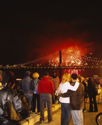 Rear view of a group of people watching a fireworks display von Panoramic Images