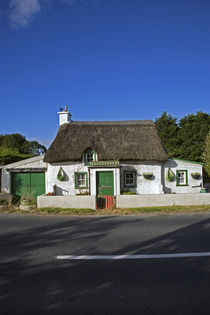 Traditional Thatched Cottage, Mooncoin, County Kilkenny, Ireland von Panoramic Images