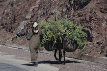 Rural woman and her donkey on the road in the High Atlas Mountains, Morocco by Panoramic Images