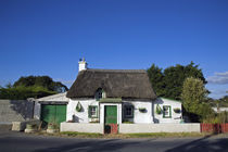 Traditional Thatched Cottage, Mooncoin, County Kilkenny, Ireland by Panoramic Images