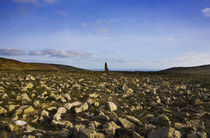 Standing Stone, Monavullagh Mountains, County Waterford, Ireland von Panoramic Images