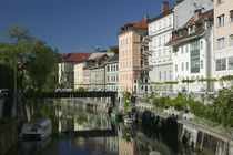Buildings at the waterfront, Ljubljanica River, Ljubljana, Slovenia von Panoramic Images