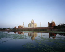 Taj Mahal reflected in the Yamuna River, Agra, Rajasthan, India von Panoramic Images