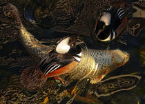 Ducks Over Koi 1 by Eye in Hand Gallery