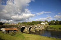 Bridge over the River Ilen near Skibbereen, County Cork, Ireland von Panoramic Images
