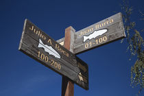 Low angle view of street signs, Junin De Los Andes, Lake District, Argentina von Panoramic Images