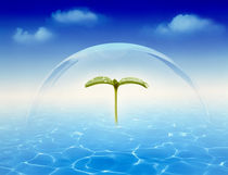 Leaf sprig floating under clear dome above rippling water clouds in blue sky by Panoramic Images
