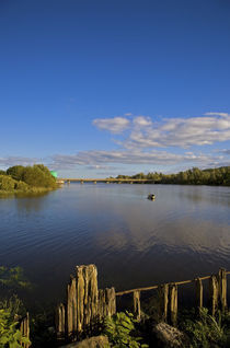The River Suir, Fiddown, County Kilkenny, Ireland von Panoramic Images