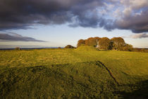 The Mound of the Hostages, Tara, 2,000 BC, County Meath, Ireland von Panoramic Images
