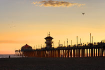 Birds at Sunset - Huntington Beach, California by Eye in Hand Gallery