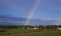 Rainbow over Farm, Near Ballydowane, The Copper Coast, County Waterford, Ireland by Panoramic Images