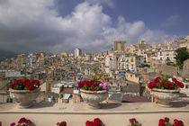 Potted plants on the ledge of a balcony, Termini Imerese, Palermo, Sicily, Italy von Panoramic Images