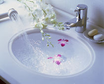Close up of white porcelain sink bowl with orchids floating in water by Panoramic Images