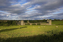 15th Century Walls around Augustinian Monestary, Kells, County Kilkenny, Ireland by Panoramic Images
