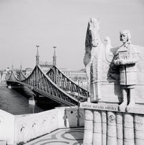 Bridge across a river, Liberty Bridge, Danube River, Budapest, Hungary by Panoramic Images