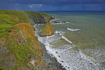 Coastal Scenery Near Bunmahon, The Copper Coast, County Waterford, Ireland von Panoramic Images